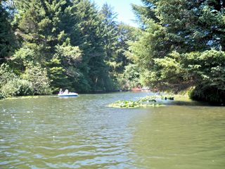 NE Lake DR 208